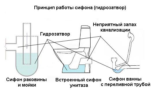 Как сделать на канализации гидрозатвор